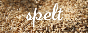 The FODMAP content of spelt. Is spelt low FODMAP?