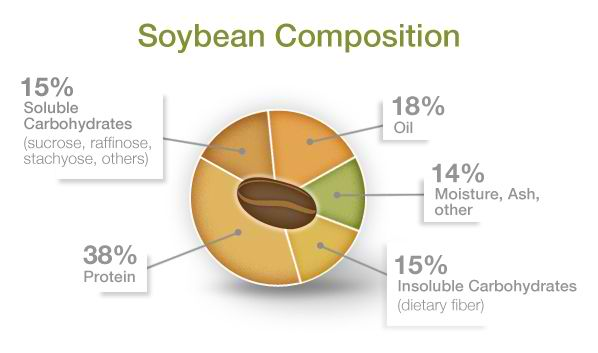 Soybean Composition